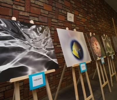Exhibition 2015 – 2016